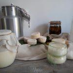 Le lait à la maison, laitages et fromages