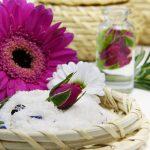 Les Huiles Végétales, découverte de leurs usages cosmétiques et thérapeutiques!